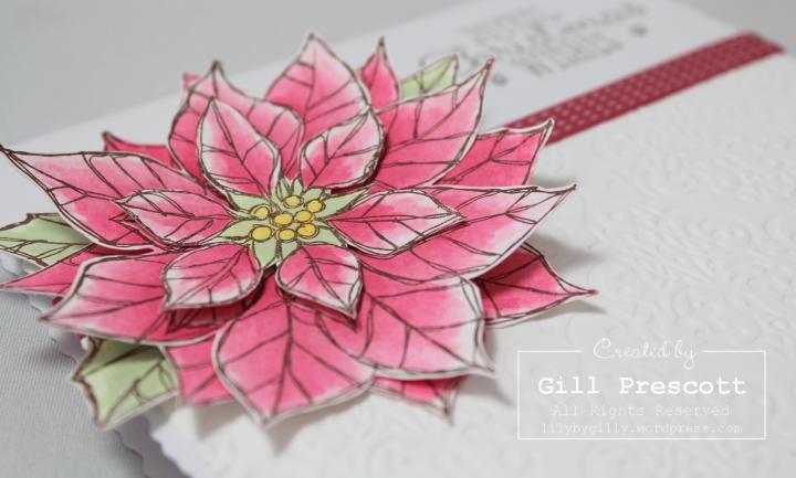 Joyful Christmas by Stampin Up poinsettia close up